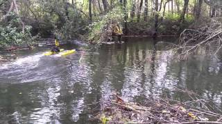 Hydrone-RCV with HydroLite Echosounder in Thick Canopy Tree Coverage