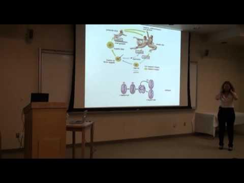 Neta Zuckerman - Biology for Engineers: Part 1
