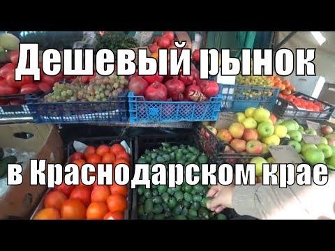 Дешевый рынок в Краснодарском крае. Рыбалка.