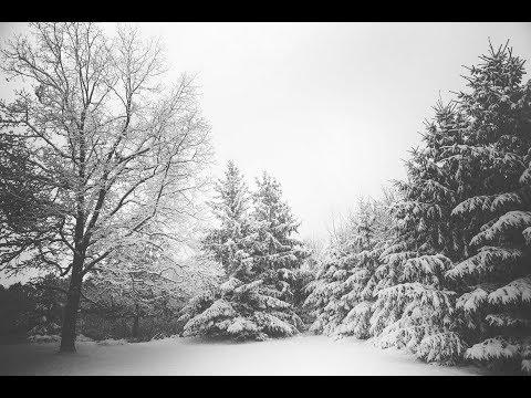 Heavy Snowfall in Vancouver, BC Dashcam VLOG