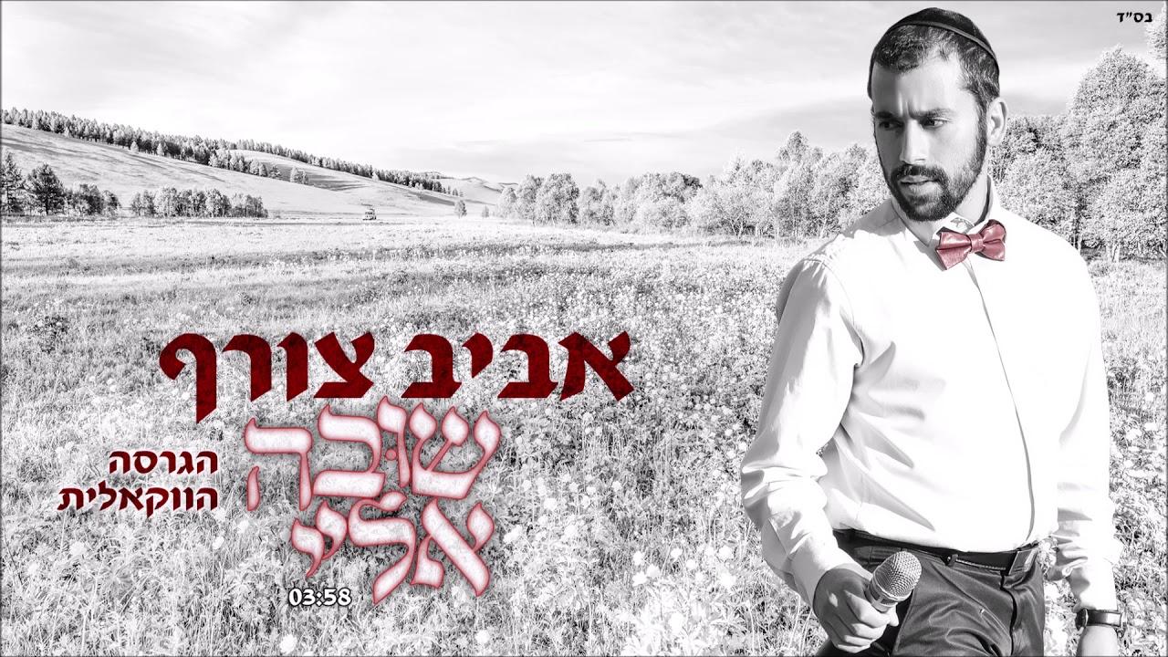 אביב צורף שובה אליי ווקאלי | Aviv Tzoref Shuva Elay Acapella