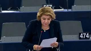 Intervento in aula di Caterina Chinnici sulla lotta alle frodi doganali e protezione delle risorse proprie dell'UE