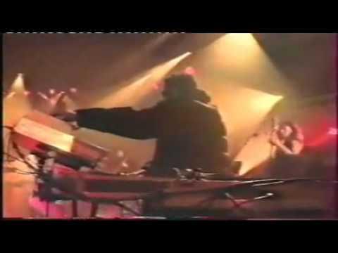 Baby Fox - Rain (NPA Live)