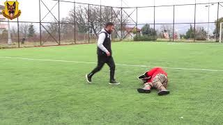 Alman Çoban Köpeği Bodyguard ve Alan Koruma çalışması