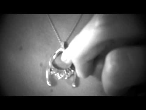 How To: Emily C® Wishbone Necklace