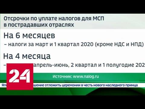 Помощь от государства: какой бизнес может воспользоваться новыми льготами - Россия 24