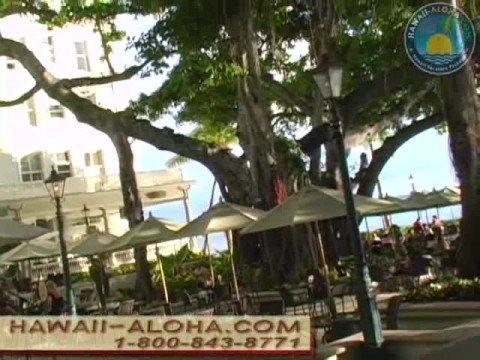 Westin Moana Surfrider  Oahu