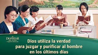"""Película evangélica """"El despertar del sueño"""" Escena 3 - Dios utiliza la verdad para juzgar y purificar al hombre en los últimos días"""