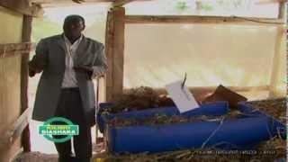K24 KILIMO BIASHARA EPISODE 7 PART 2. EARTHWORMS REARING IN KENYA.