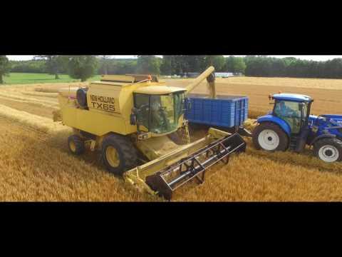 Gurteen Agricultural College Harvest 2017
