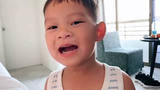 Khoảnh khắc vui nhộn cùng Mio | Gia Đình Lý Hải Minh Hà