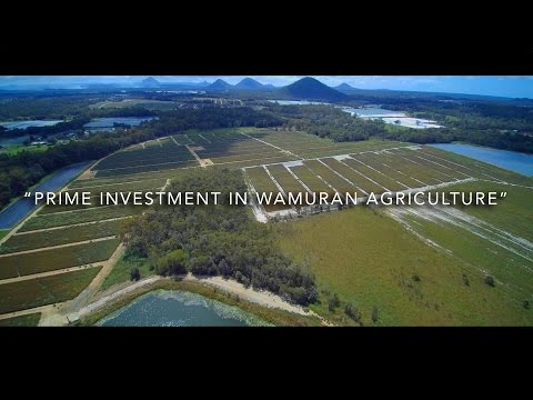280 CHILD ROAD -  WAMURAN - AN AERIAL TOUR
