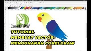 TUTORIAL CORELDRAW GAMBAR VECTOR BURUNG LOVEBIRD PARBLUE