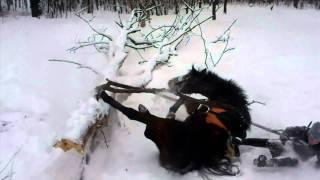 Окропим снежок красненьким