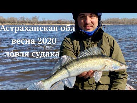 Рыбалка в Астрахани, весна 2020. САМОИЗОЛЯЦИЯ НА РЕКЕ! Ловля судака в Никольском. Часть 2
