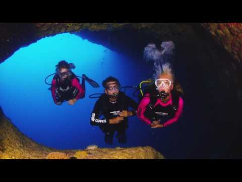 Scuba Diving Blue Holes with Stuart Cove's Dive Bahamas