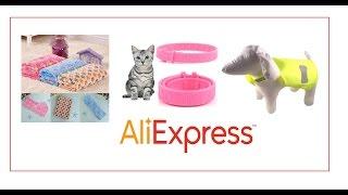 товары для животных 🐈  с Али Экспресс(ошейники тут- http://ali.pub/8n9rf коврик подстилка - http://ali.pub/g2lcb Жилет Безопасности - http://ali.pub/xkcon., 2016-10-05T10:07:40.000Z)