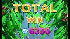 KANGAROO LAND +BIG WIN!!! +FREE SPINS! +BONUS! online free slot SLOTSCOCKTAIL egt