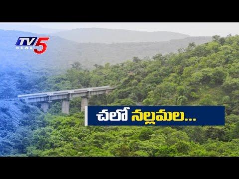 Ecotourism In Nallamala Forest | Kurnool | TV5 News