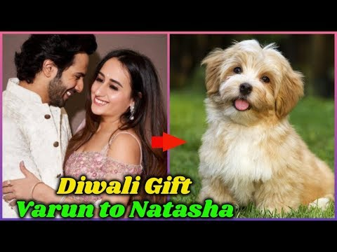 Expensive Diwali Gift From Varun Dhawan to Natasha Dalal Mp3