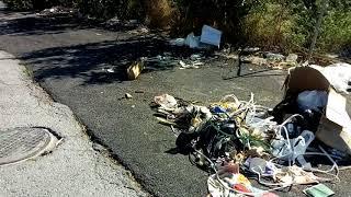 Acumulación de basura en Puente Tocinos, carril de la Portada