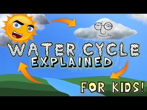 Water Cycle Explained for Kids!