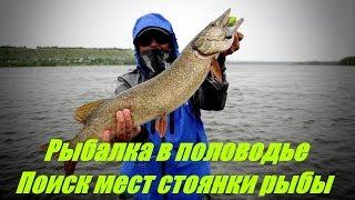 Ловля на сильном течении. Поиск мест стоянки рыбы