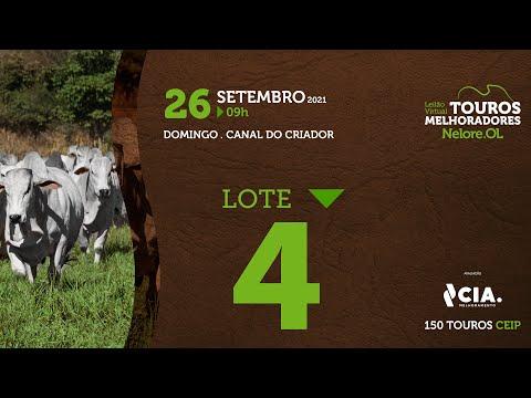 LOTE 4 - LEILÃO VIRTUAL DE TOUROS 2021 NELORE OL - CEIP