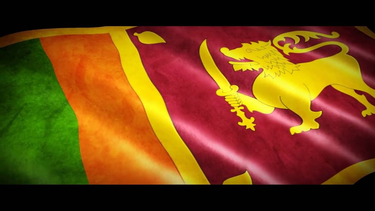 Image result for sri lanka flag