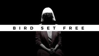 Sia - Birds Set Free (Subtitulado al Español)