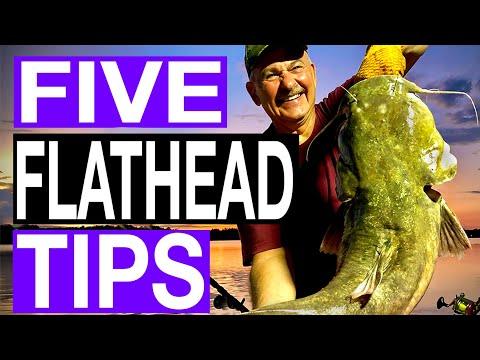 5 Tips For Flathead Catfish