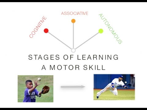 Stages of Learning: Skill Acquisition - PE & Sport (Motor Skills)