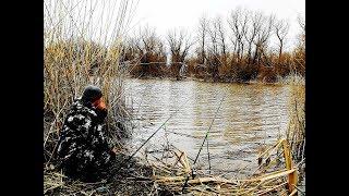 Рыбалка в Апреле НОВАЯ СНАСТЬ ИСПРАВИЛА ВСЮ РЫБАЛКУ И ЛИМОН