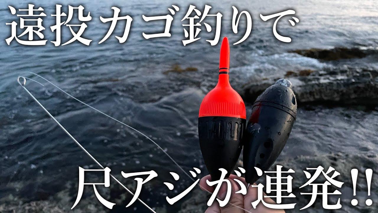【デカいアジを釣りたい方へ】夜のカゴ釣りで30cm越えの尺アジが連発!