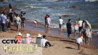 《中国财经报道》 20190724 11:00| CCTV财经