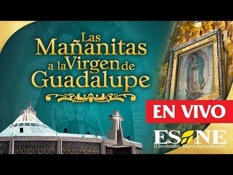 Las mañanitas a la Virgen de Guadalupe 2018  | ESNE