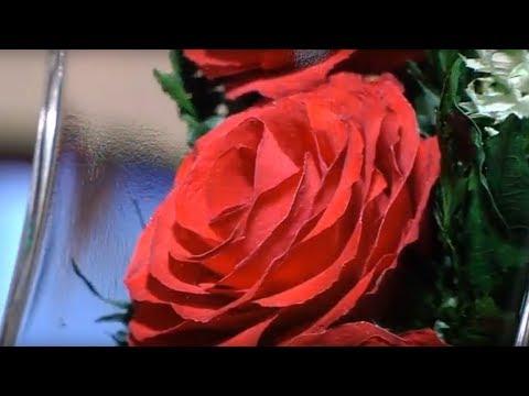 Применение композиций Fiora в интерьере / цветы в вакууме, живые цветы в стекле, в колбе /