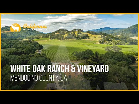 Million Dollar Estate | White Oak Ranch and Vineyard California Property For Sale