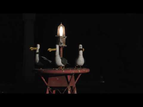 """4K Ultra HD Finding Nemo Submarine """"Mine!"""" Seagulls at Night in Dolby at Disneyland"""