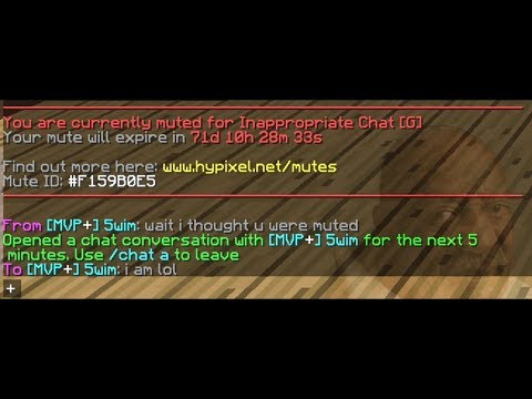 How To Type In Chat When Youre Muted On Hypixel ( GLITCH )