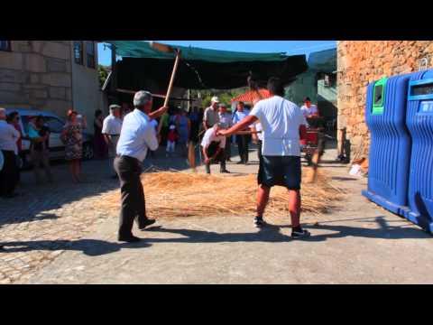 Festa do Pão 2015 em Carnicães. Malhar o Pão. 1