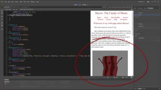 9. Working With HTML in Dreamweaver