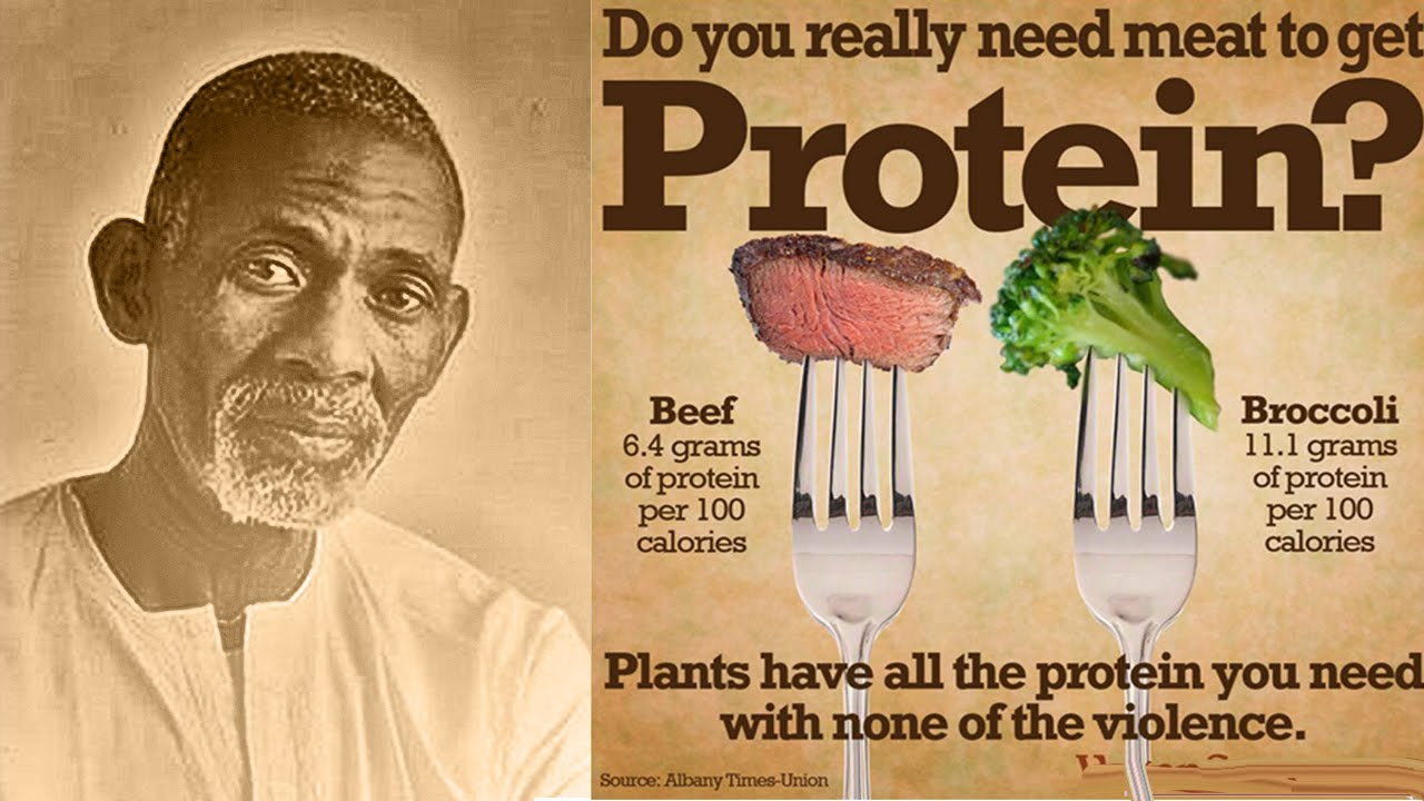 What about PROTEIN? – Advocates for Dr  Sebi