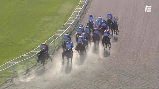 Vidéo de la course PMU PRIX DE SAINTE-MAXIME