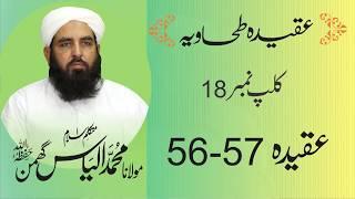 Aqidah Tahawiya عقیدہ طحاویہ شارٹ کلپس | Clip # 18 | Aqeeda 56-57