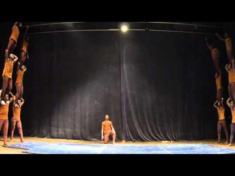 africa circus
