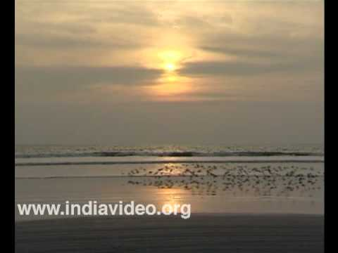 Twilight charm of Muzhapilangad beach