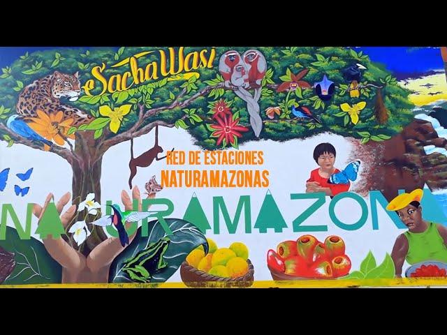 NATURAMAZONAS - RED DE ESTACIONES 2020