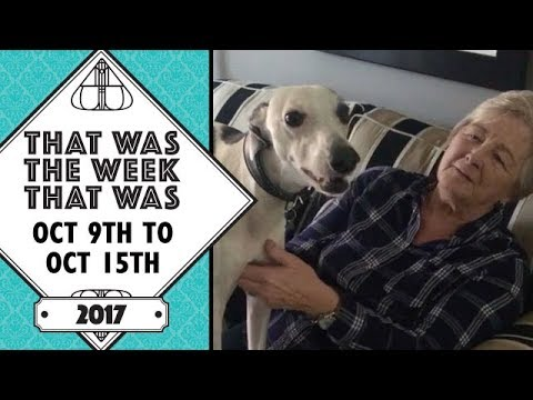 VLOG - That Was The Week That Was October 9th to Oct 15th 2017