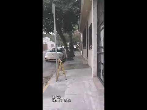"""El Comienzo """"mi Vida En Monterrey N. L."""""""